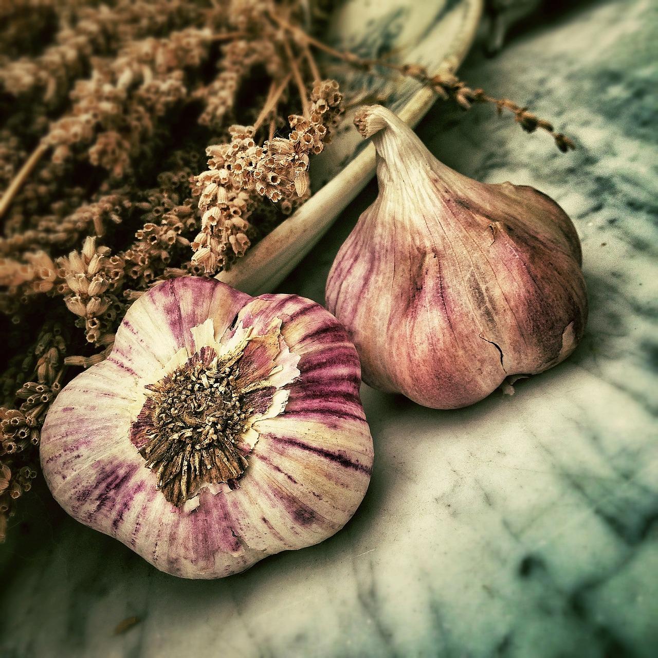 Knoblauch: Wichtig um den Körper zu entgiften